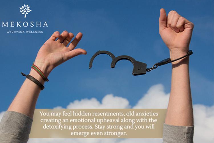 Experience the Shifts Towards Restoring Your Body - Mekosha