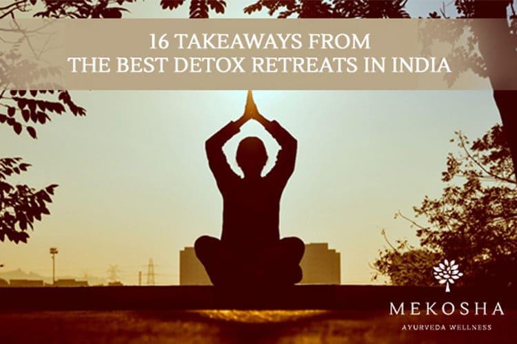 Mekosha-16 Takeaways from the Best Detox Retreats In India